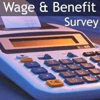 Wage_Beneift_survey