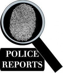 policereport graphic