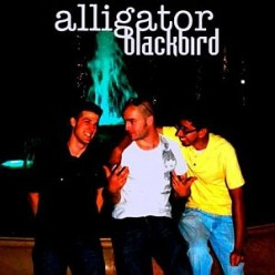 Encore_Alligator Blackbird
