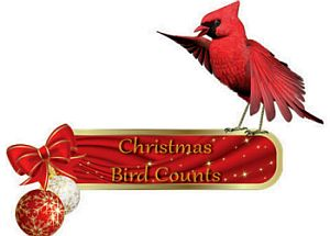 christmas_bird_count_logo