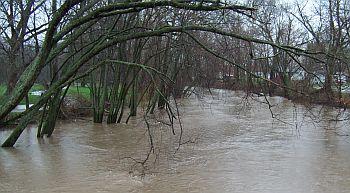 Flood_3