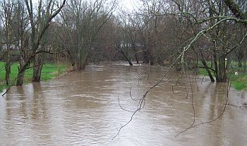 flood_5