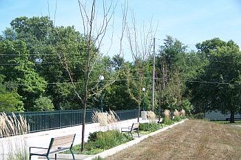 SouthGateway_trees_2