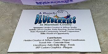 Giant Blueberries sign